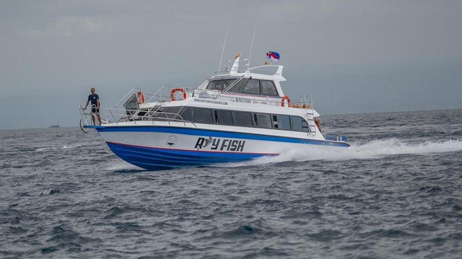Ray Fish Fast Cruise Ferry to Nusa Penida