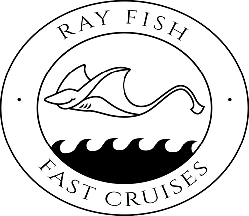 Ray Fish Fast Cruises